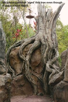 A sculpted tree at Asia.