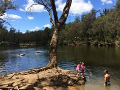 Lane Poole Reserve Dwellingup - Buggybuddys guide to Perth Holidays With Kids, School Holidays, School Holiday Activities, Western Australia, Perth, Holiday Ideas, Places To Visit, Camping, Good Things