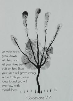 Colossians 2:7 Let your roots grow down into him, and let your lives be built on him. Then your faith will grow strong in the truth you were taught, and you will overflow with thankfulness.