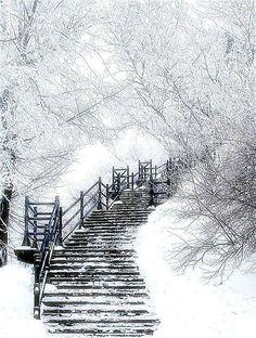 Winter Wonderland, Beautiful Places, Beautiful Pictures, Simply Beautiful, Winter Love, Winter White, Winter Walk, Snow White, Winter Magic