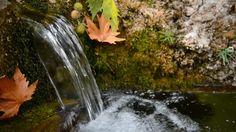doğadaki su kaynakları