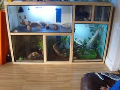 pet I think this might be my next years summer project. But bigger and for all the r reptiles Bigger Pet Project reptile room Summer years Reptile Habitat, Reptile House, Reptile Room, Reptile Cage, Reptile Tanks, Reptile Rescue, Gecko Habitat, Terrarium Reptile, Ideas