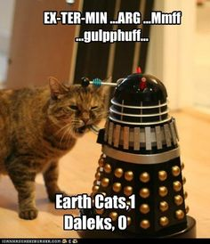 Katzen gegen Daleks                                                                                                                                                                                 Mehr