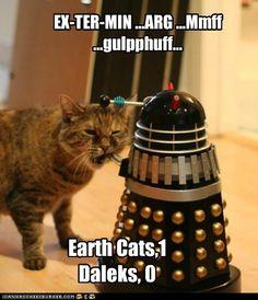 Cats:1 Daleks: 0
