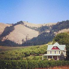 @ Hood River & Oregon Winery.