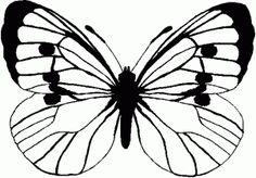 Dibujos-colorear-mariposas-2