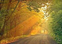 Take Me Home, Country Road★John Denver/Olivia Newton-John - Senri's Tapestry