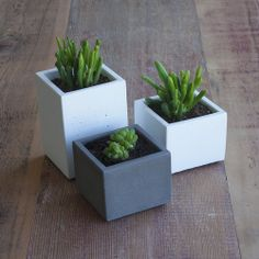 Coffee Table Set of Concrete Planters — Nystrom Goods