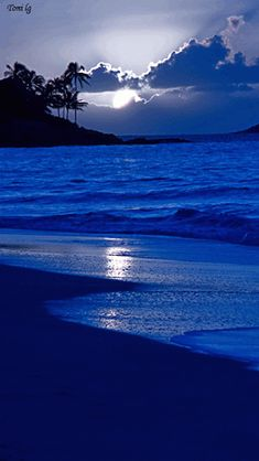 Beach night by Toni lg Beach Pictures, Nature Pictures, Beautiful Pictures, Beach Aesthetic, Blue Aesthetic, Ciel Nocturne, Beach Night, Sunset Beach, Beautiful Moon
