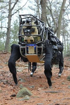 Boston Dynamics' supersized AlphaDog gets let off the leash in a forest. This is one monster robot--check out the DARPA video for yourself. Robot Militar, Military Robot, Boston Dynamics, Real Robots, Big Robots, Alpha Dog, Robot Design, Future Tech, Cool Tech