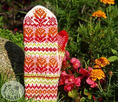 These stranded colorwork mittens Blomster are ideally suited to keeping your hands warm in the cold winter days. They have the charming bobble edging and small patterning on the thumb and palm.