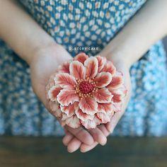 D.Story Cake/ Flower Cake Class #cake #beanpaste #flowercake #앙금플라워 #플라워케이크 #취미…