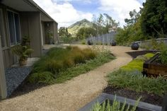 like the simplicity of a gravel path, bark mulch and a few plants.  Would put in some natural grasses and lavendar