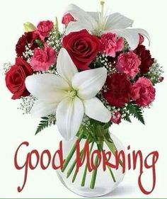 Good Morning greetings good morning good morning greeting good morning quote good morning poem good morning blessings good morning friends and family good morning coffee Good Morning Tuesday, Good Morning Coffee, Good Morning Picture, Good Morning Messages, Good Morning Good Night, Morning Pictures, Good Morning Wishes, Good Morning Images, Good Morning Quotes