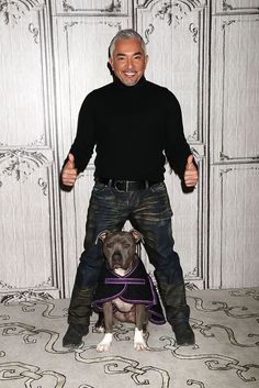 10 Dog Training Tricks Straight From the Dog Whisperer - Cesar Millan, better known as the The Dog Whisperer, is known for offering tried-and-true dog-train - Training Your Puppy, Dog Training Tips, Potty Training, Leash Training, Training Classes, Pitbull Training, Training Collar, Collie, Game Mode
