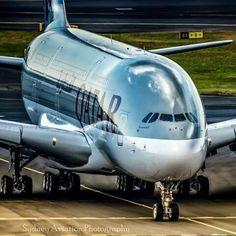 Najlepsze linie lotnicze na świecie 2016. http://luxlife.pl/najlepsze-linie-lotnicze-swiecie-2016/