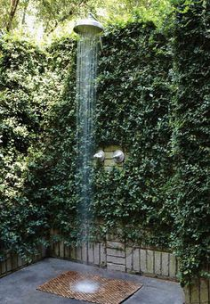 Outdoor shower surrounded by green vines