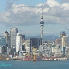 Neuseeland Cn Tower, New York Skyline, Building, Travel, Dreams, New Zealand, Destinations, Viajes, Buildings
