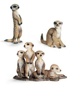 Look what I found on #zulily! Meerkat Figurine Set by Schleich #zulilyfinds