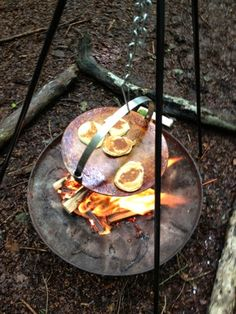Foodie Quine: Outdoor Cooking in the Woods. Forest School & Blaeberry Bash.