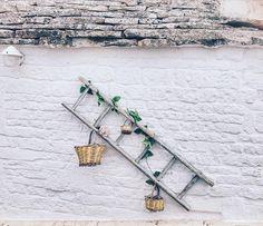 Alberobello what else? {Summer memories}  #puglia #travelmemories #weareinpuglia #lastsummer #menories #holidays #welivetoexplore #mytravels #summer #locorotondo #yallerspuglia  #viaggiareperborghi #italia #italy #apulia #streetview #trullo #ruralliving #architecture #valleditria #igersitalia #BorghiViaggioItaliano #amazing #simplicity #mytravelgram