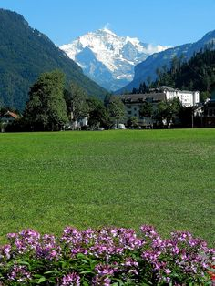 Jungfrau from Interlaken , Switzerland is a lovely place to stay a few days and sightsee by train. You could catch a train to many places and return the same day. J.D.