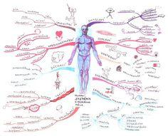 Moderní vyučovací metody – 2. díl – Myšlenkové mapy (aktualizováno) Learning Games, Homeschool, Medical, Teaching, Education, History, Montessori, Study, Ideas