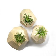 Reclaimed Wood Planters - Roots in Rust - love the faceted shapes