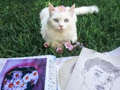 """coltre: """" c0ffeekitten: """" thecutestofthecute: """" coltre: """" she come in my garden everyday and sit in front of me while I work on my sketchbook. she doesn't want food, she just sit there looking at me...."""