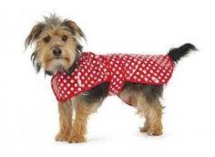 Spotted dog raincoat £10