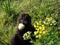 Erwin liebt Wiesenblumen.
