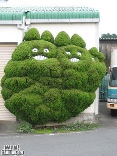Funny pictures about Totoro bushes. Oh, and cool pics about Totoro bushes. Also, Totoro bushes. Topiary Garden, Garden Art, Street Art, Rome Antique, My Neighbor Totoro, Miyazaki, Land Art, Public Art, Hedges