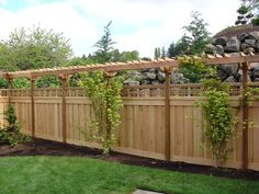 Privacy Ideas For Backyards might be a good resource for landscaping some privacy privacy landscapinglandscaping ideasbackyard Httpwwwgeorgeandgabecomimagesfenceswooden Fence Ideasgarden Ideasbackyard