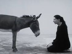 Marina Abramovic - Confession, 2010 - Contemporary sacred art | CoSA Marina Abramovic, Sacred Art, Picasso, Horses, Contemporary, Google, Baby, Painting, Animals