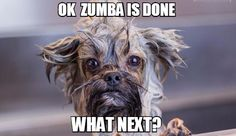 Ok Zumba is done what next?