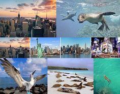 Vuelos baratos – Vuelos a Ecuador Pasajes a las Islas Galápagos desde Nueva York