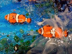 Glass Underwater Mural for Kitchen | Designer Glass Mosaics|Designer Glass Mosaics