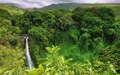 Green-Cultural-Travel-Cambodia-Mondulkiri-Waterfall