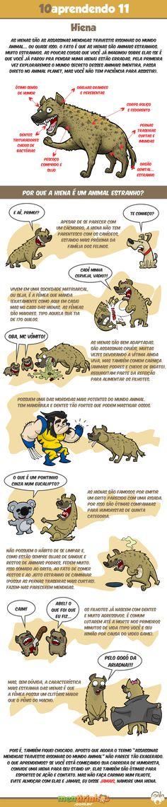 10aprendendo com o Coala #11 - Hiena