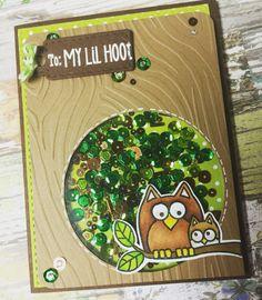 Shaker card using hero arts lil hoot stamp set