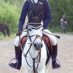 my horse Samba