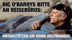 Ric O'Barrys Bitte an Reisebüros: Unterstützen Sie keine Delfinarien!