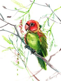 Green Red Parrot original watercolor painting 12 X by ORIGINALONLY, $25.00