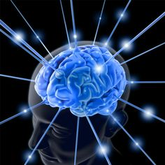 The brain is the most outstanding organ in a human body.    It works non-stop from birth until one falls in love.