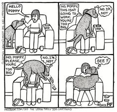 A dog's life. [I wish my English Springer (Spunky Girl) would do this. She feels unworthy to sit on anyone's lap so she humbly lays at our feet <3 - Mini Van]
