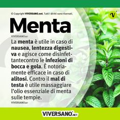 In Natura, Herbal Tea, Doterra, Herbalism, Medicine, Food And Drink, Herbs, Healthy Recipes, Photo And Video
