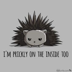 "This guy has Monday written all over him. Get ""Prickly on the Inside"" for $12 for just 48 hours! (ò_óˇ) http://www.teeturtle.com/products/prickly-on-the-inside"