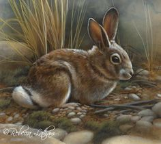 Rabbit miniature painting, watercolor on board