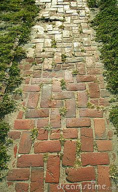 Brick Path. Looks very old and worn. More