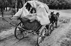 20 Black and White Photographs of Gypsies from between the and Show Nomadic Life at Its Most Romantic ~ vintage everyday Gypsy Life, Gypsy Soul, Magnum Photos, Vintage Photography, Street Photography, Tim Walker, Elliott Erwitt, Most Romantic, Vintage Photos